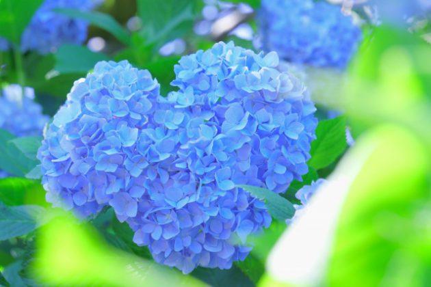 滋賀県甲賀市水口の調剤薬局 みんなの薬局